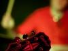 VV&TBV_PubPrzejscie_28.01.2012-27